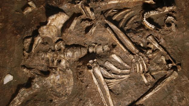 Neanderthaller. Avrupa'da bizden daha önce yaşıyorlardı.