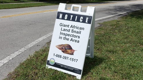 Government sign about Giant African Land Snails