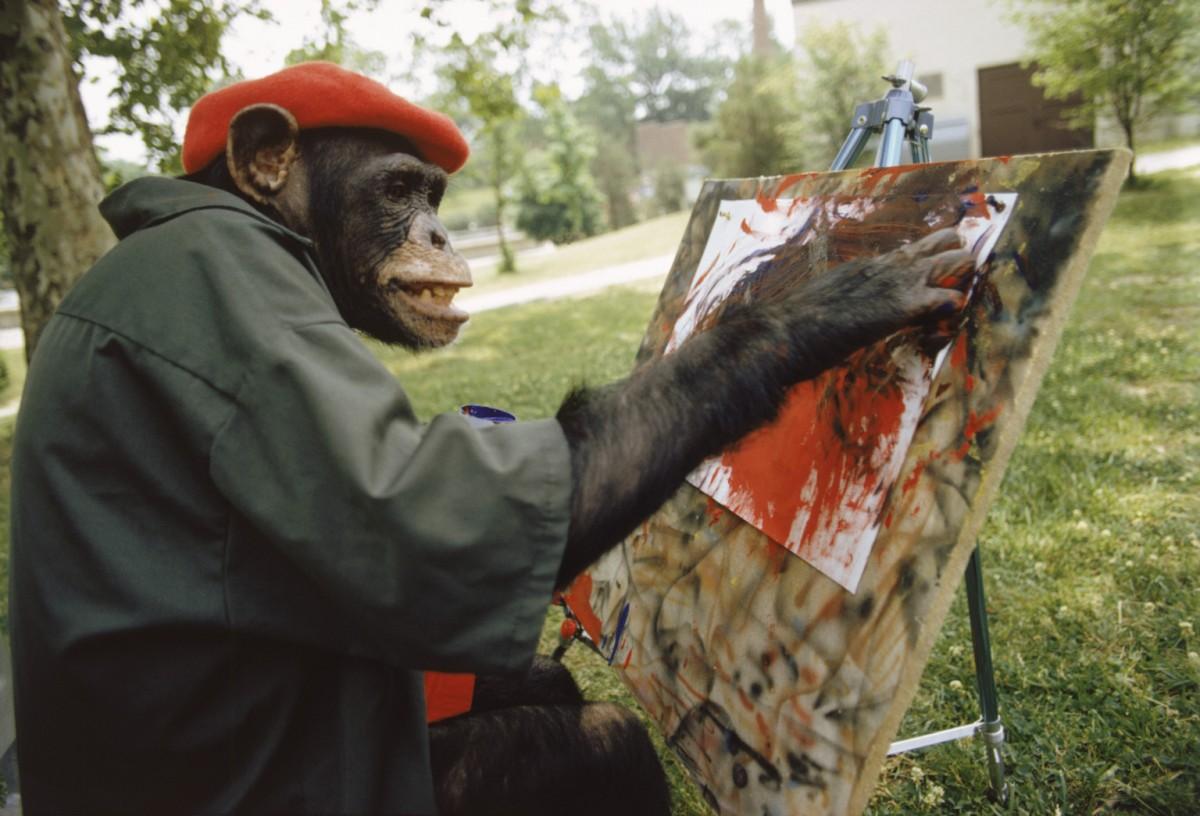 Şempanzelerde saydığımız 6 faktör çeşitli seviyelerde bulunur. Örneğin el-göz koordinasyonları oldukça gelişmiştir; ancak iki ayak üzerinde yürümezler ve halen ormanlarda yaşamaktadırlar, dolayısıyla savana hayatına geçiş gibi devasa bir değişim yaşamamışlardır. Sosyal yapıları oldukça güçlüdür; ancak iletişim yetenekleri halen oldukça kısıtlıdır ve şu anda üzerlerinde iletişimi önemli kılacak çok fazla baskı bulunmamaktadır. Ayrıca şempanzeler arada sırada et yeseler de, ot baskın bir hepçil diyete sahiptirler. Buna rağmen, insanların zekasının evrimini mümkün kılan faktörlerin altında olmaları, onların da zekasının evrimini mümkün kılmıştır. Tabii ki bu, ortak atalarımıza ve daha eskisine kadar da takip edilebilir. Primatlar, yapıları gereği bizim 6 faktörümüzü çeşitli seviyelerde barındırmaktadırlar; ancak bu faktörlerin halen süregelmesi, beyinlerinin körelmemesini sağlamaktadır.