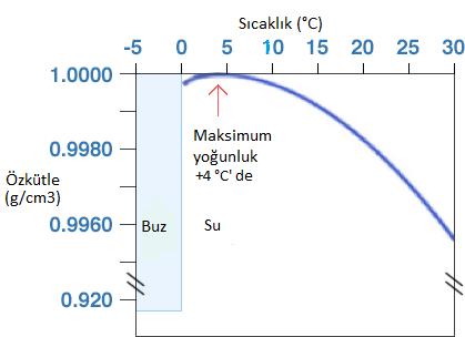 Grafikte de görüldüğü gibi su moleküllerinin yoğunluğunun en büyük olduğu sıcaklık +4 °C' dir.