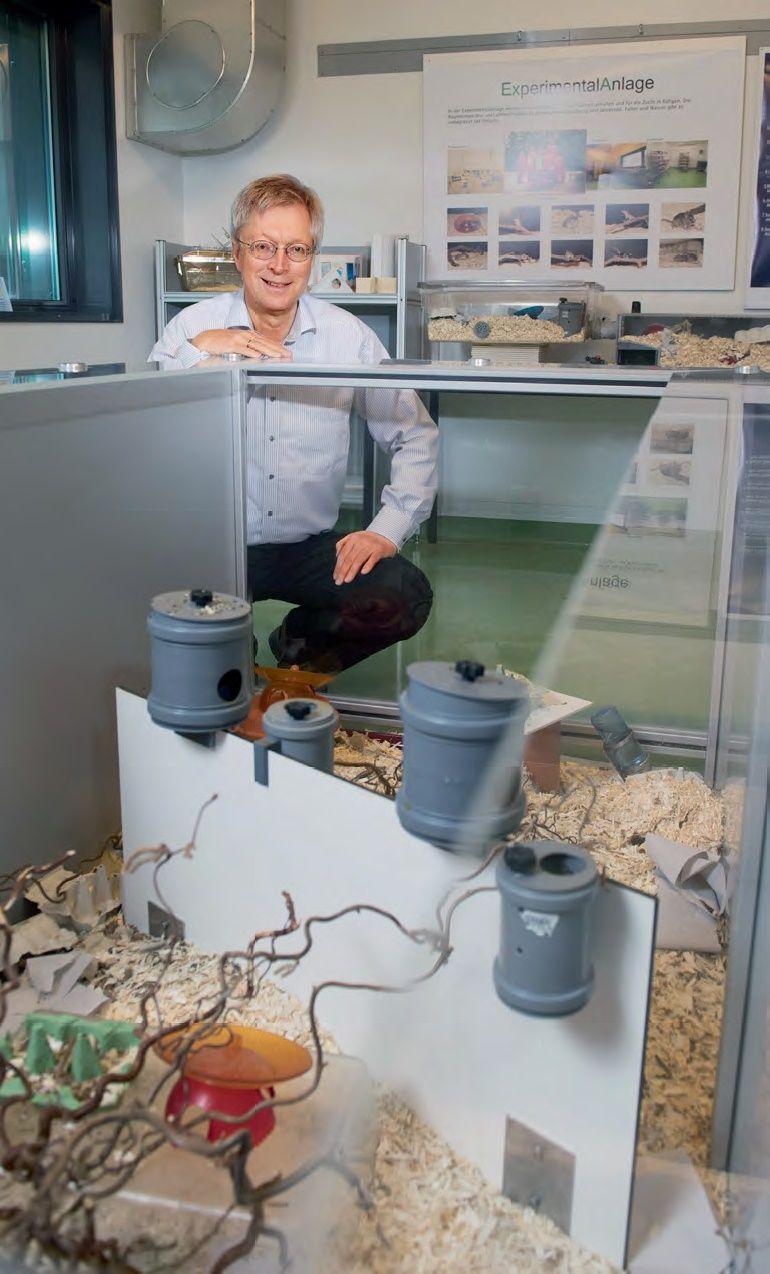 Diethard Tautz, Max-Planck Evrimsel Biyoloji Enstitüsü'nün misafir odasındaki demonstrasyon alanında. Burada fareler çeşitlilik içeren bir çevrede hemen hemen doğal koşullar altında yaşamaktadır. Asıl deney odaları aynı yapısal elemanlarla donatılmıştır.