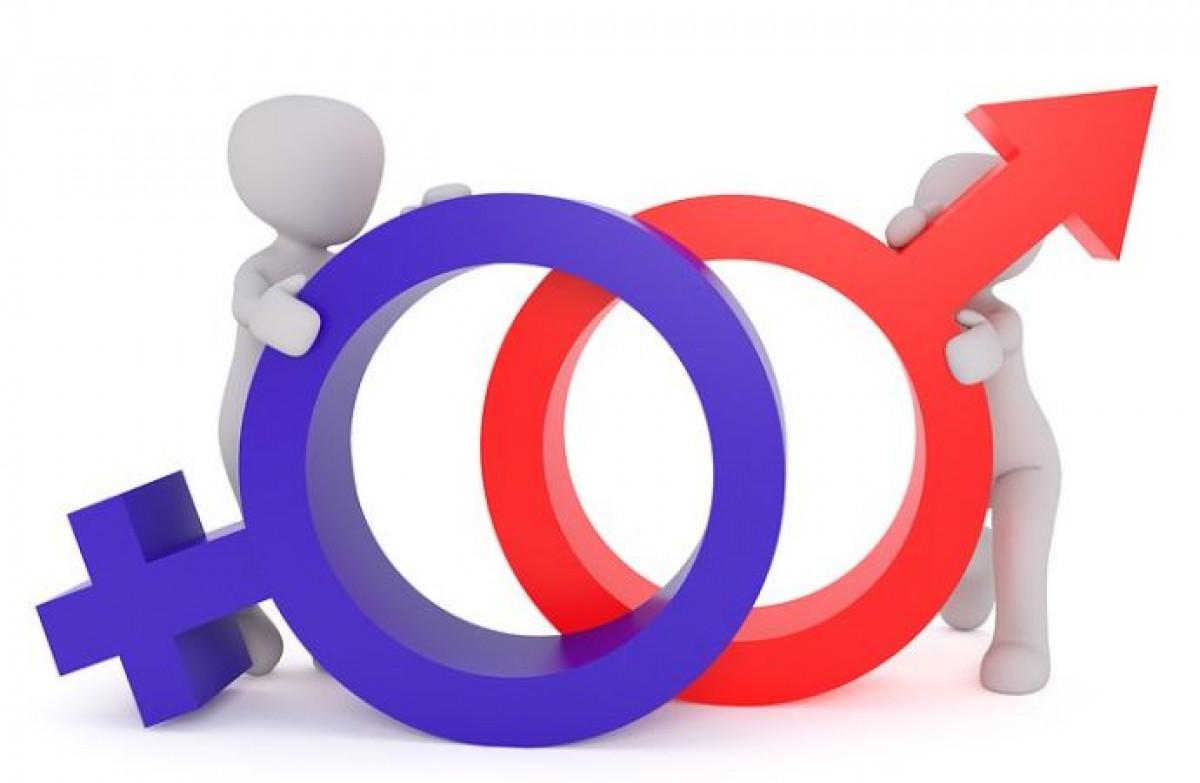 Hermaphrodites, iki cinsiyette olan insanlardır
