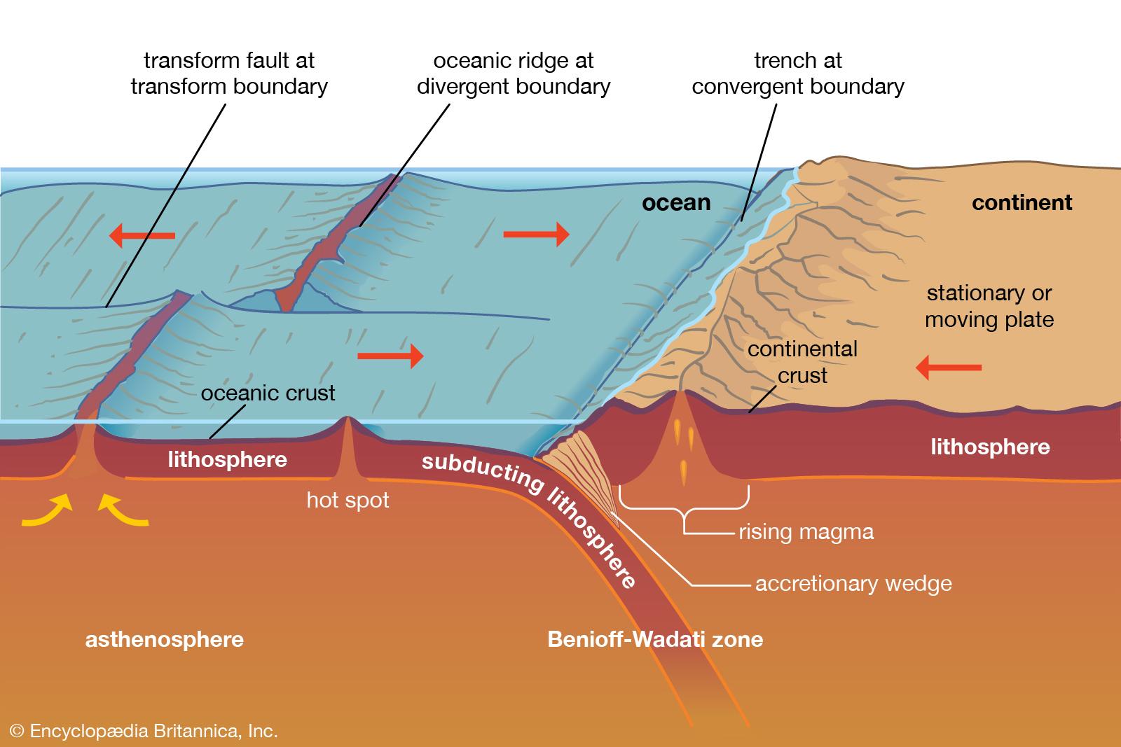 Levhaların litosferdeki subdiksiyon (batma/dalma) hareketini gösteren bir infografik.