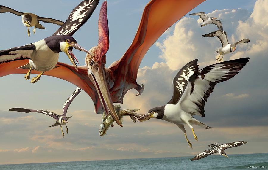 Meşhur uçan sürüngen cinsi olan Pteranodon ile dönemin dişli kuşlarından olan Ichthyornis'in anlaşmazlığı.