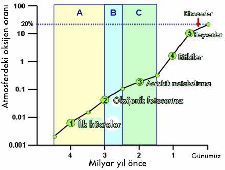 Büyük Oksidasyon Olayı ve atmosferdeki oksijen oranı değişimi.
