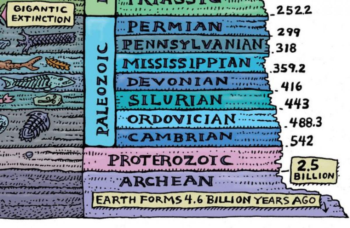 Evrimsel Süreç 1 Evrim Tarihinin Büyük Zaman çizelgesi 1 Kısım