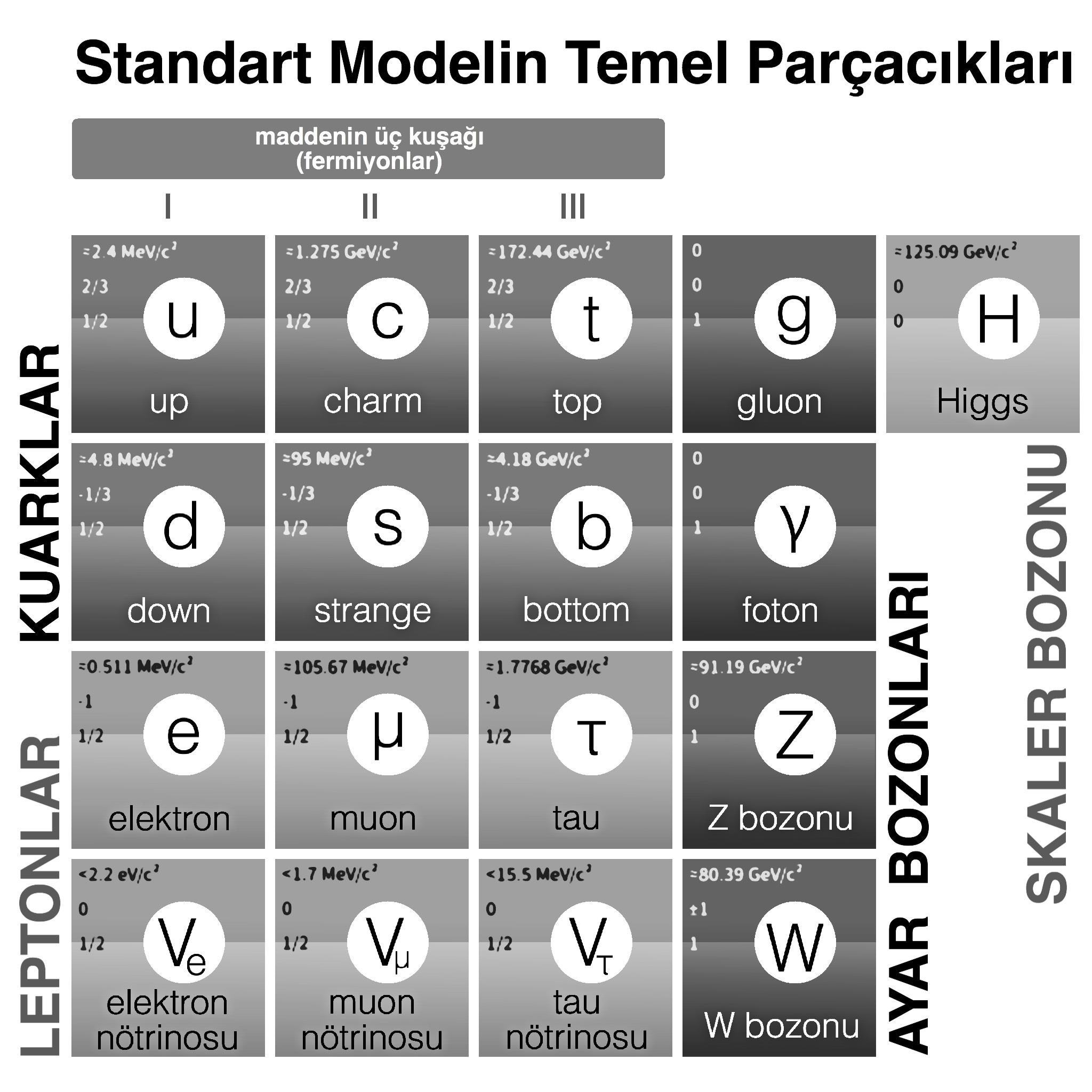 Görsel 2: Fizikteki Standart Modele ait temel parçacıklar