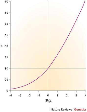 Görseldeki grafik, çeşitli etkili mutasyonların sabitlenme olasıklarının, nötrale göre oranını vermektedir. Görüldüğü ve tahmin edilebileceği gibi faydalı mutasyonlara (grafiğin sağ tarafına) gidildikçe sabitlenme olasılığı yükselmektedir. Öte yandan negatif mutasyonların da sabitlenme oranları sıfır olmak zorunda değildir; ancak yine de çoğu zaman sıfıra oldukça yakındır. Üzerinde yeterince güçlü seçilim baskısı olmayan, nötrale yakın negatif mutasyonlar da popülasyon içerisinde düşük bir olasılıkla da olsa sabitlenebilirler.