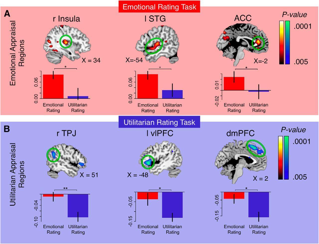 Görsel 2: Duygusal Değerlendirme (Emotional Rating) kısmında beynin insula, STG ve ACC bölümleri daha aktifken Faydacı Değerlendirme (Utilitarian Rating) yapılırken beynin temporal/paryetal kesişim yeri (TPJ) ve dorsomedial prefrontal korteks (dmPFC) aktivitesinde artış gözlemlenmiştir.