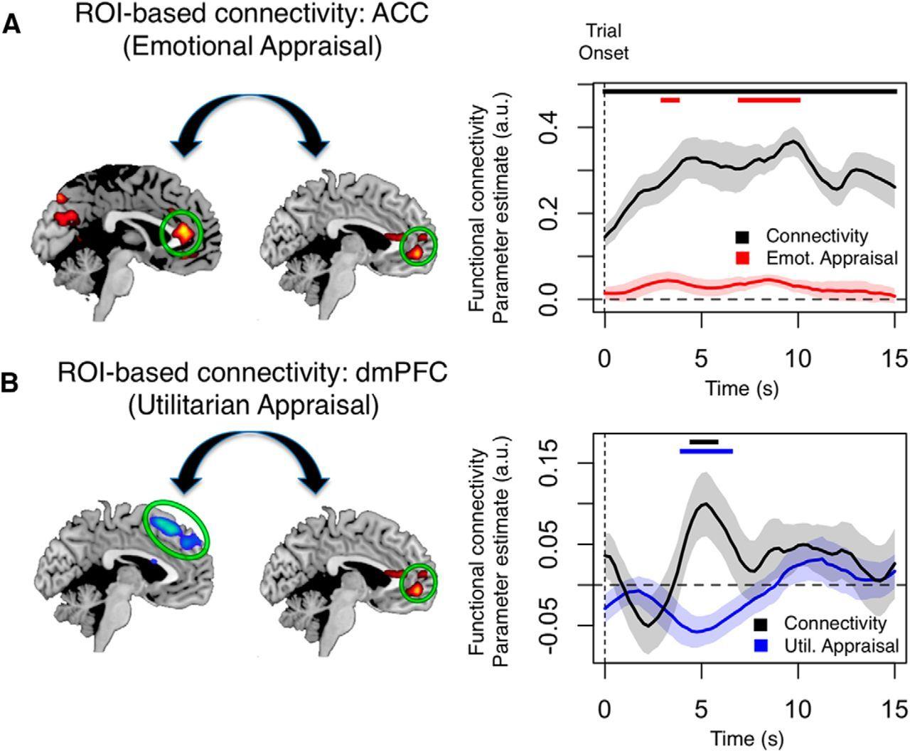 Görsel 3: Genel bir ahlaki karara varılırken ayrı bölgelerden gelen bilgi, beynin ventromedial prefrontal korteks bölgesinde (vmPFC) birleştirilir.