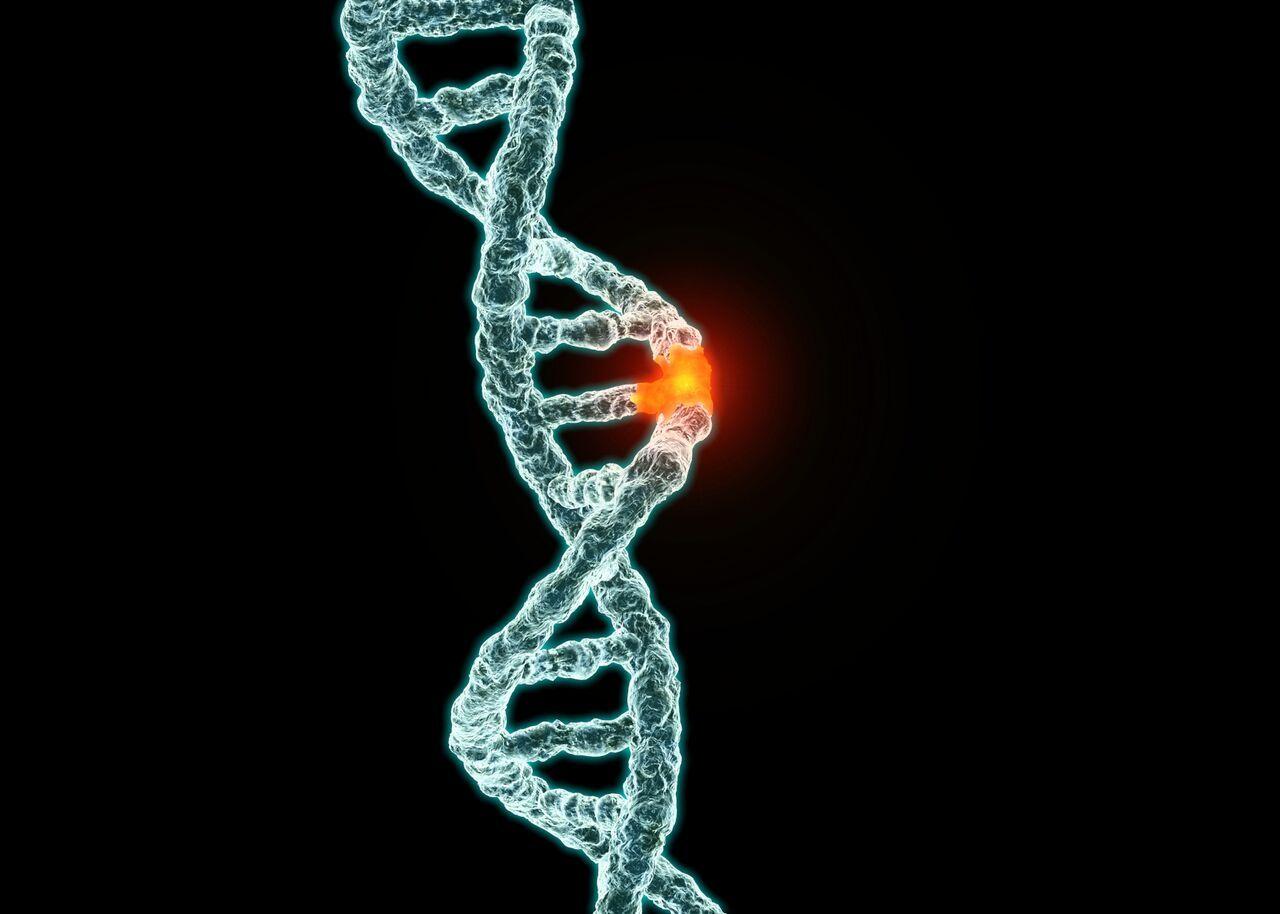 """Mutasyonlar neredeyse her zaman öngörülemez, rastgele genetik değişimlerdir. Bu değişimlerin neredeyse hiçbiri doğrudan bir değişime neden olmaz ve nötrdür. Dolayısıyla bu değişime neden olmayan, birden fazla mutasyon bir araya gelerek, genlerde kademeli bir değişime neden olabilirler. Bu sebeple, """"X-Men"""" tarzı bir ani mutasyon fikri gerçek dışıdır. Mutasyonların ani etkili olanları da vardır ve bunların çoğu zararlıdır. Ancak mutasyonlar, genel olarak bakılacaksa, zararsız ve etkisiz, uzun vadede seçilim sayesinde avantajlar sağlayabilecek genetik değişimlerdir."""