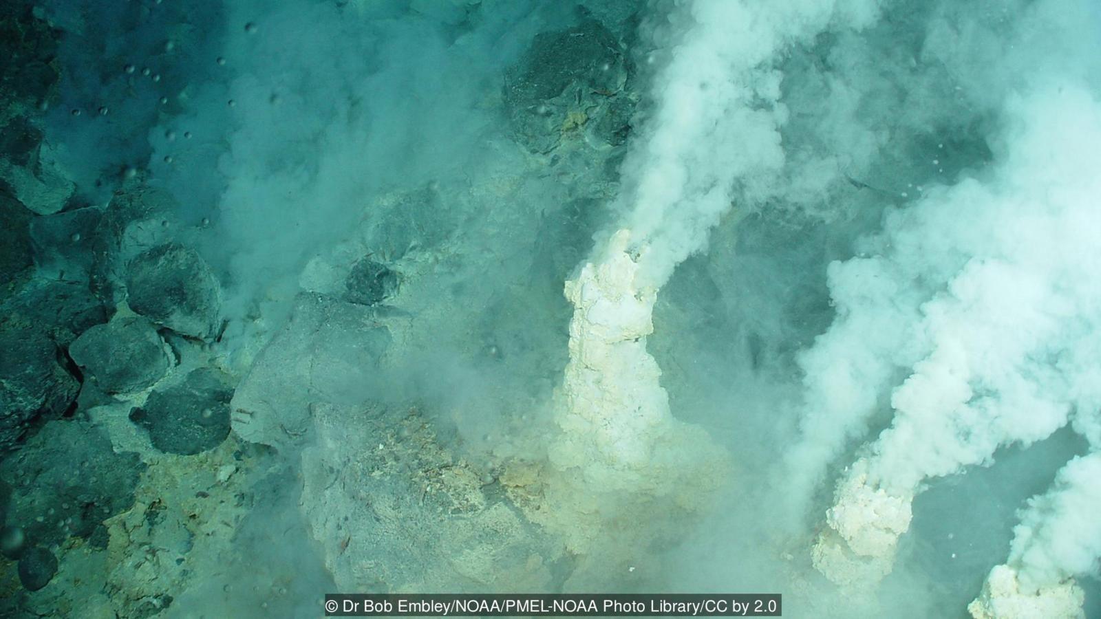 Pasifik Okyanusu'nun dibindeki volkanik bacalar...