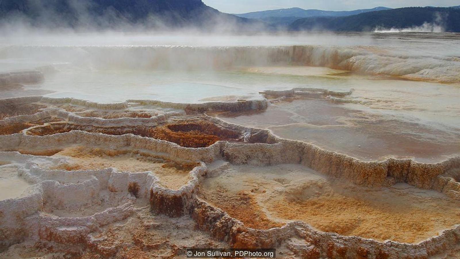 Szostak'ın proto hücreleri aşırı sıcaklıklarda varlığını sürdürebilmektedir.
