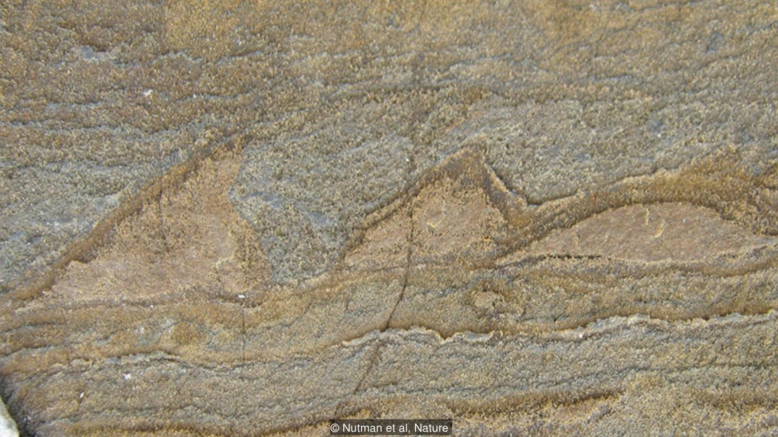 Bu dalgalı desenlerin 3.7 milyar yaşındaki canlılara ait olduğu düşünülmektedir.