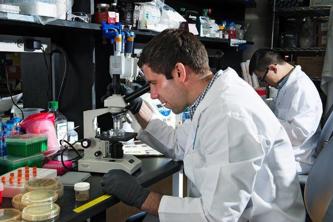 John Rinn, Harvard'daki laboratuarında.