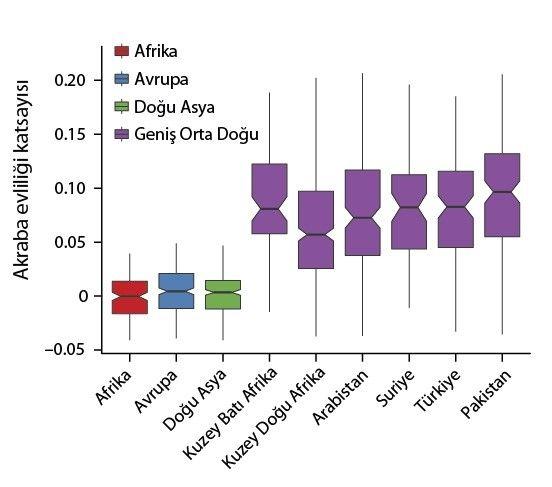 Orta Doğu popülasyonlarında akraba evliliği