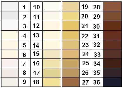 deri rengi kategorizasyonu