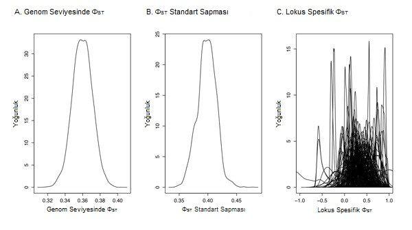 Şekil 3: Popülasyonların farklılaşmasının istatistiği, her bir lokusun farklılaşmasının yorumlanabilmesi için olasılıksal bir çerçeve sunan Bayes metoduyla tahmini olarak hesaplanabilir. Kuzey Amerika'daki Lycaeides kelebeği popülasyonları arasındaki farklılaşma tahminen hesaplanmış (Gompert ve ark. 2010) ve ΦST'nin genom seviyesinde tahminiyle (a) ve standart sapmasıyla (b) özetlenmiştir. Bu analiz, genom boyunca görülen, bir kısmı muhtemelen ıraksak doğal seçilim tarafından şekillendirilmiş olan yüksek varyasyonu resimlemektedir. 2010 Nature Education. Tüm hakları saklıdır.