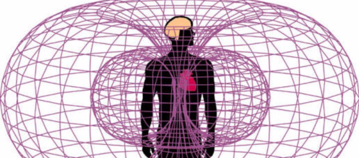 Elektromanyetik Alanların Biyolojik Etkileri - 1