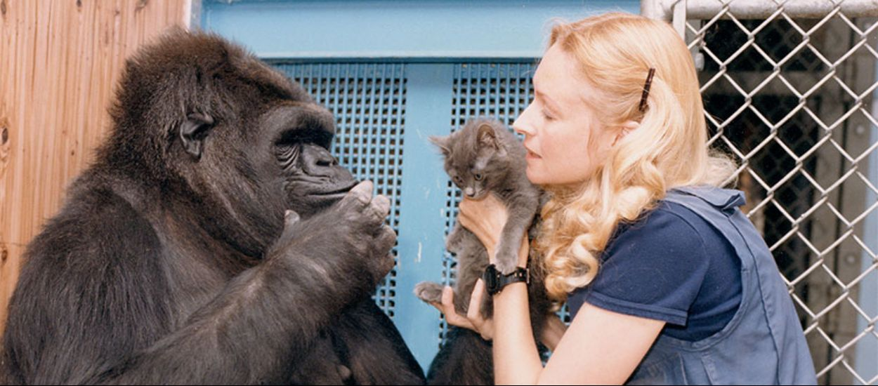 Koko ve Robin Williams